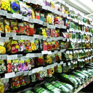 базы емаил адресов магазинов по продаже семян