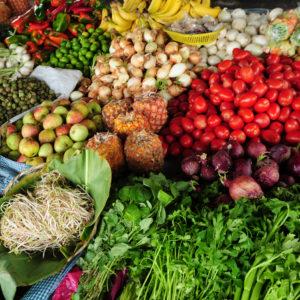 базы емал сельскохозяйственной продукции
